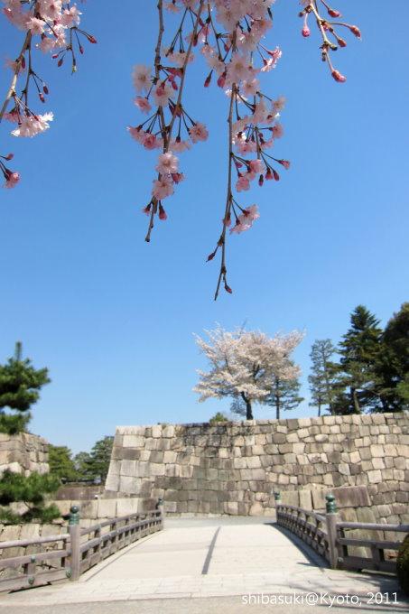20110414_Kyoto-186_二條城s.jpg