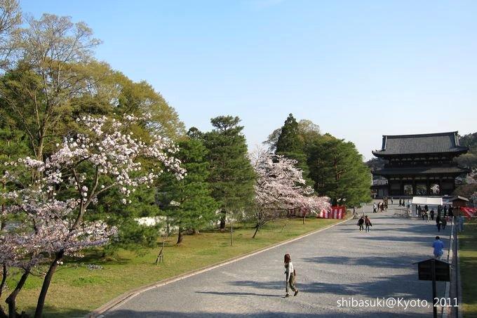 20110414_Kyoto-255_御室仁和寺_1.JPG