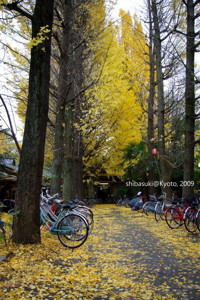 20091129_Kyoto-198_京大吉田寮_1.JPG