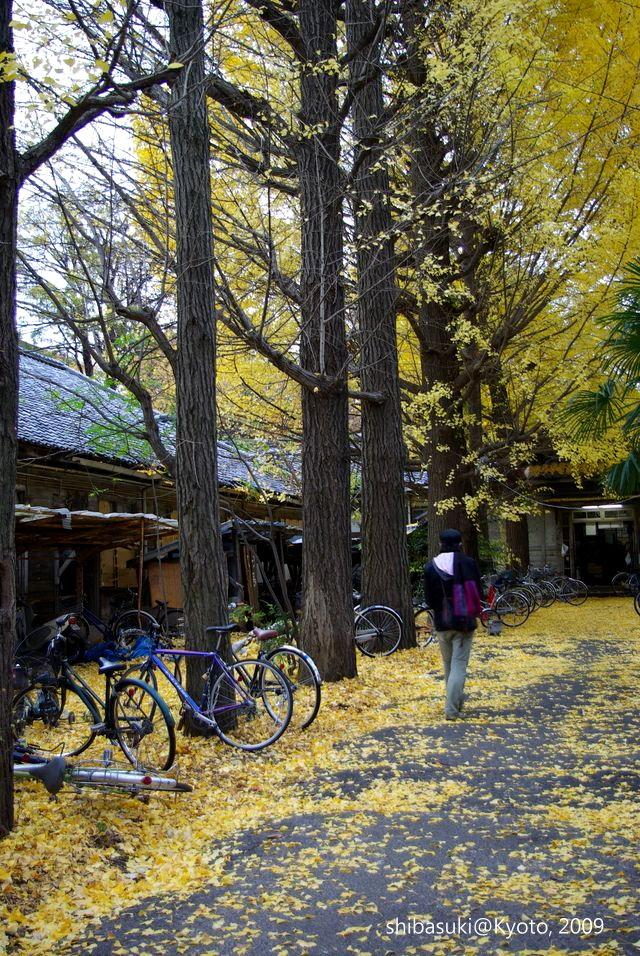 20091129_Kyoto-220_京大吉田寮_1.JPG