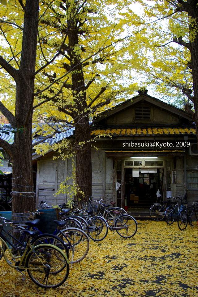 20091129_Kyoto-230_京大吉田寮_1.JPG