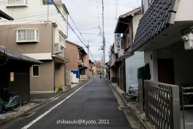 IMG_3825s.jpg