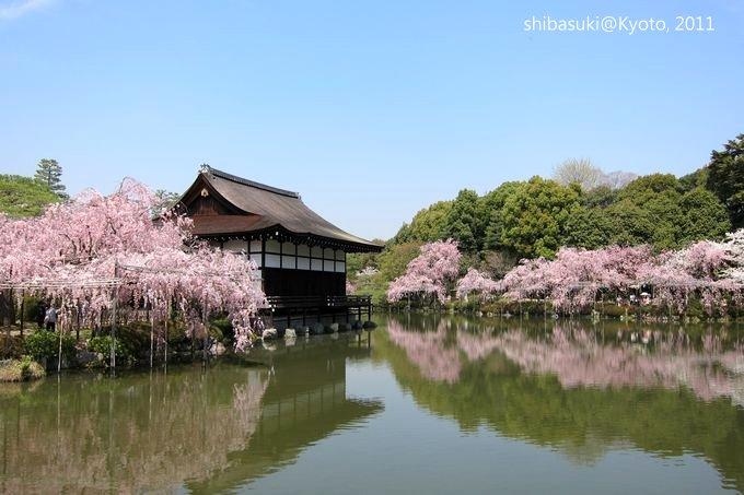 20110414_Kyoto-141_平安神宮 神苑_1.JPG