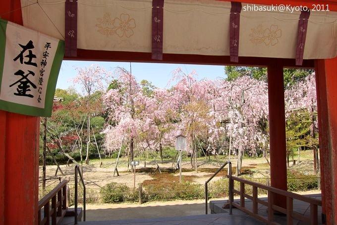 20110414_Kyoto-28_平安神宮 神苑_1.JPG