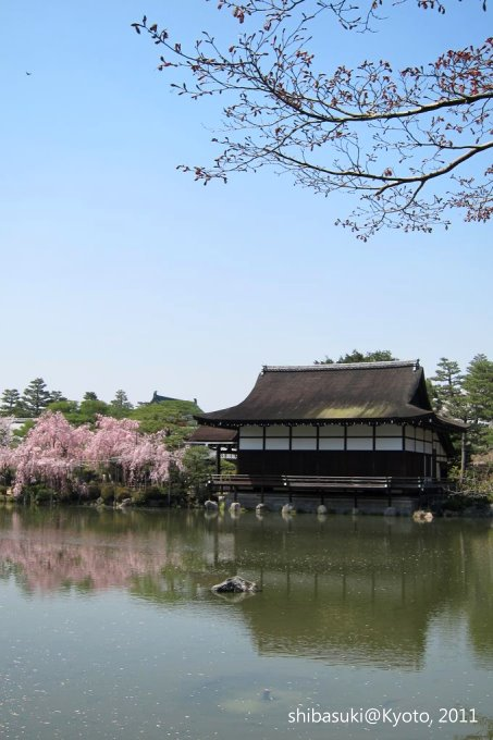 20110414_Kyoto-95_平安神宮 神苑_1.JPG