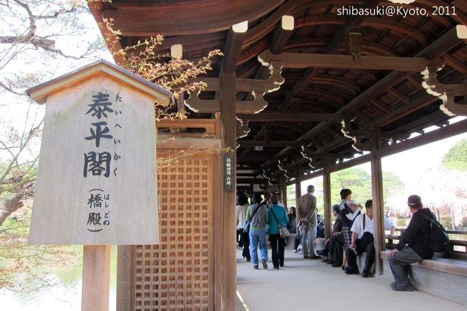 20110414_Kyoto-101_平安神宮 神苑_1.JPG