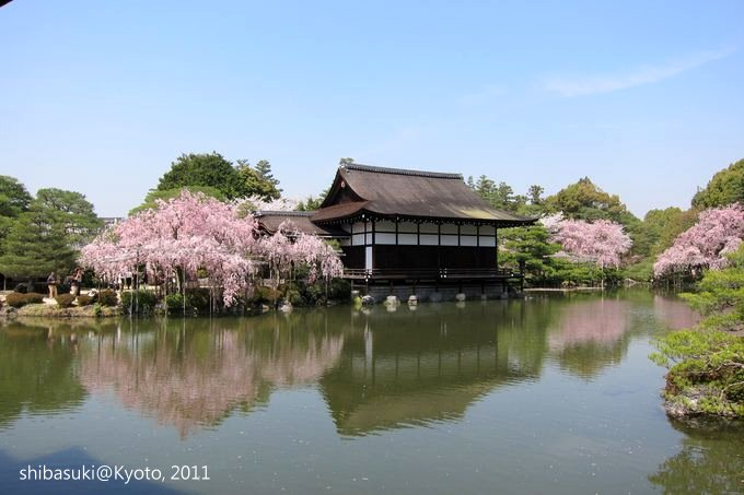 20110414_Kyoto-103_平安神宮 神苑_1.JPG
