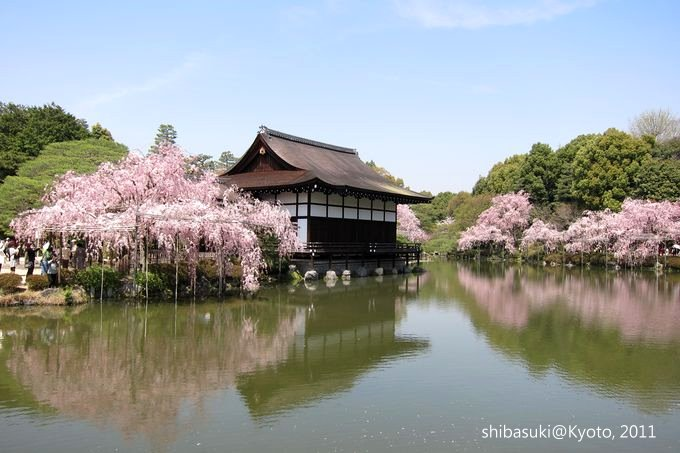 20110414_Kyoto-115_平安神宮 神苑_1.JPG