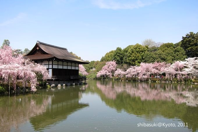 20110414_Kyoto-124_平安神宮 神苑_1.JPG