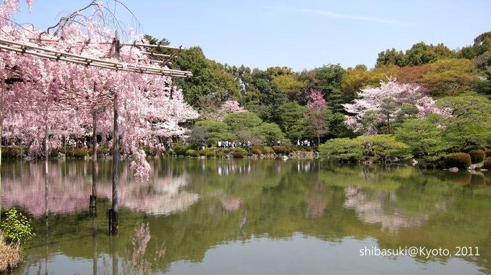 20110414_Kyoto-136_平安神宮 神苑_1.JPG