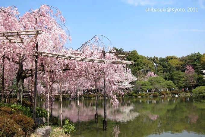 20110414_Kyoto-138_平安神宮 神苑_1.JPG