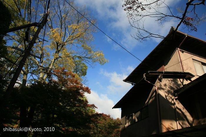 20101116_Kyoto-8_高雄_1.JPG