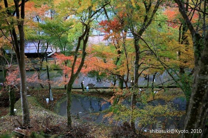 20101116_Kyoto-13_高雄_1.JPG