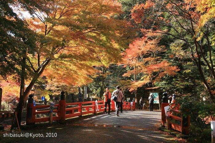 20101116_Kyoto-21_高雄神護寺_1.JPG