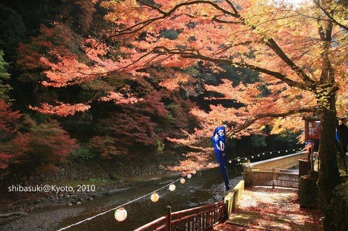20101116_Kyoto-32_高雄神護寺_1.JPG