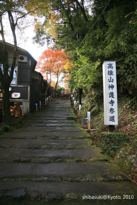 20101116_Kyoto-35_高雄神護寺_1.JPG