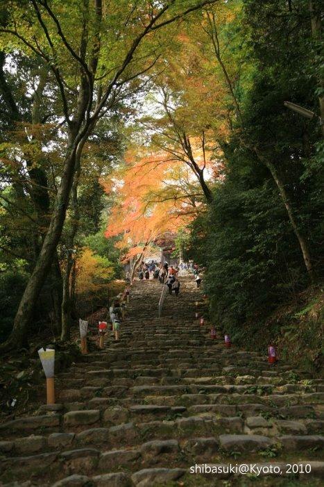 20101116_Kyoto-79_高雄神護寺_1.JPG