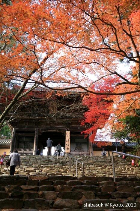 20101116_Kyoto-88_高雄神護寺_1.JPG