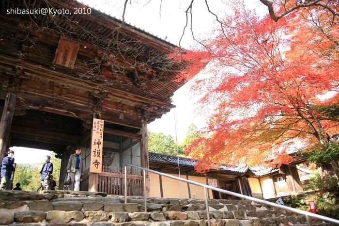 20101116_Kyoto-95_高雄神護寺_1.JPG
