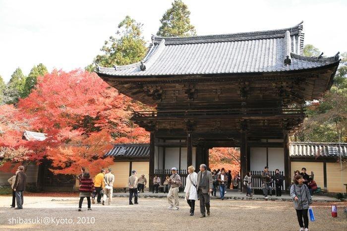 20101116_Kyoto-99_高雄神護寺_1.JPG