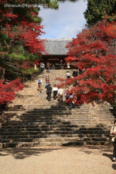 20101116_Kyoto-103_高雄神護寺_1.JPG