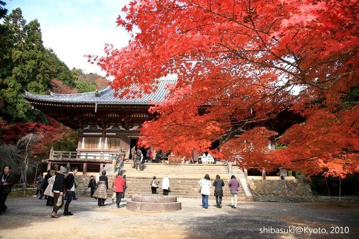 20101116_Kyoto-122_高雄神護寺_1.JPG