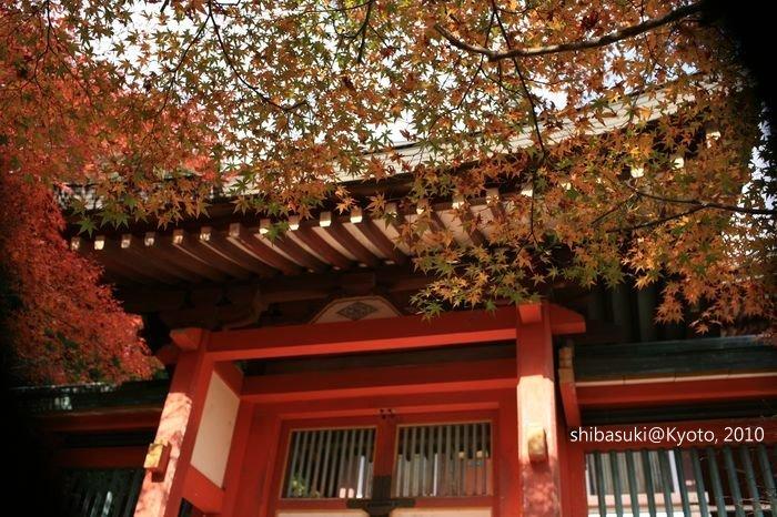 20101116_Kyoto-139_高雄神護寺_1.JPG