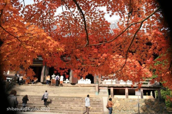 20101116_Kyoto-144_高雄神護寺_1.JPG