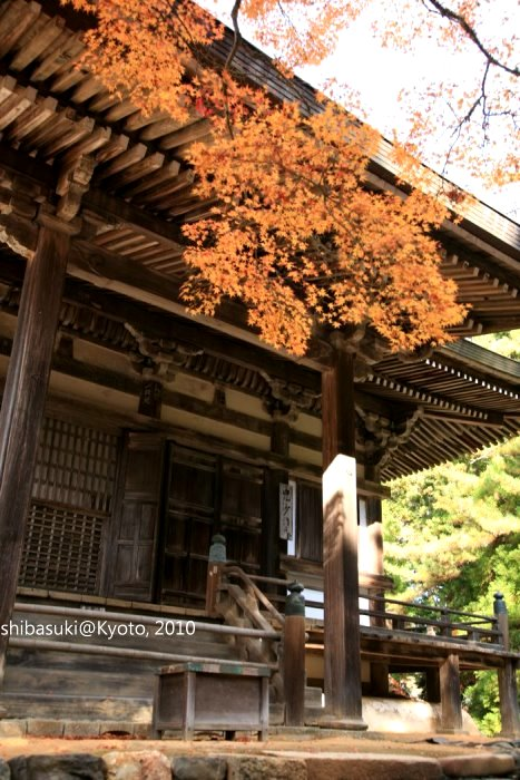 20101116_Kyoto-181_高雄神護寺_1.JPG