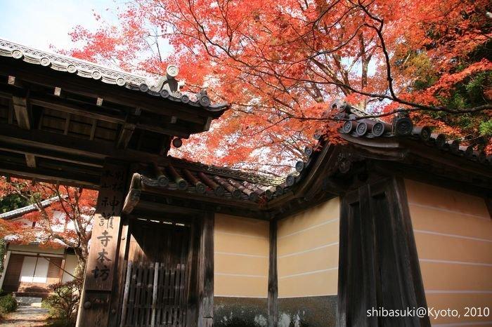 20101116_Kyoto-199_高雄神護寺_1.JPG