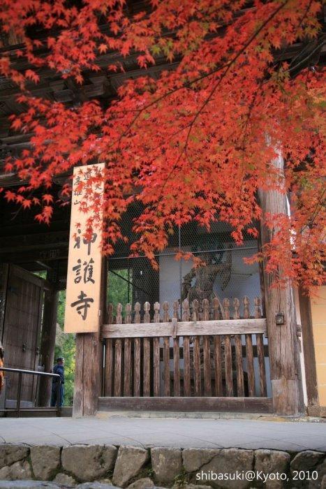 20101116_Kyoto-209_高雄神護寺_1.JPG