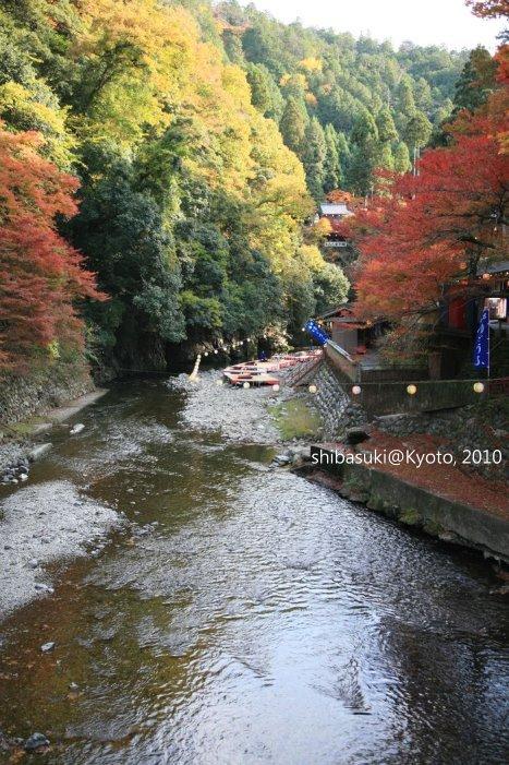 20101116_Kyoto-222_高雄神護寺_1.JPG
