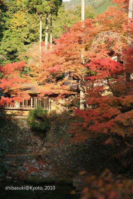 20101116_Kyoto-238_西明寺山腳_1.JPG