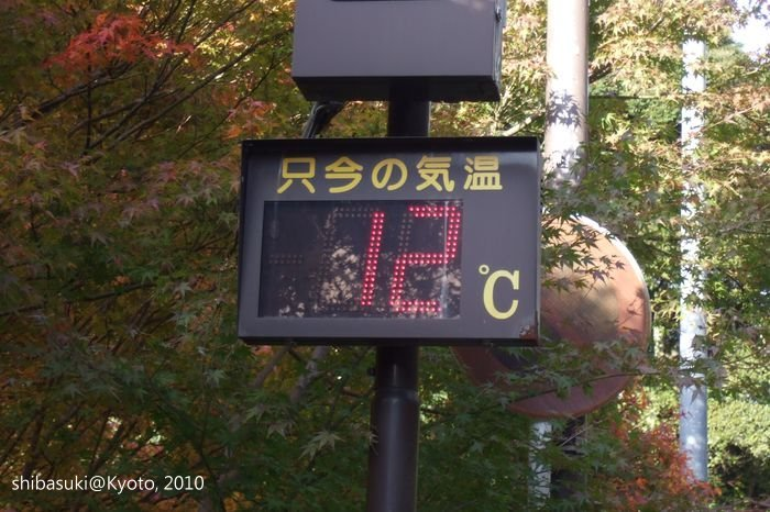 20101116_Kyoto-239_高山寺山腳_1.JPG