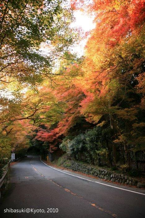 20101116_Kyoto-241_高山寺山腳_1.JPG