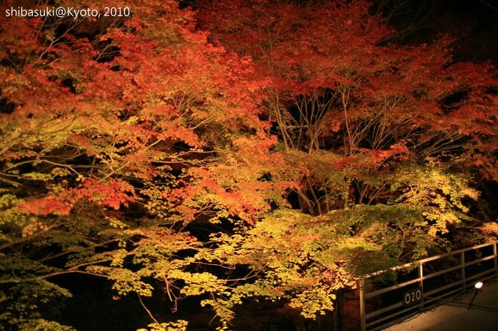 20101117_Kyoto-206_貴船車站_1.JPG