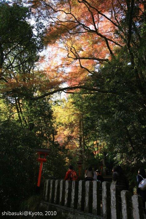 20101117_Kyoto-79_鞍馬寺 九十九折_1.JPG