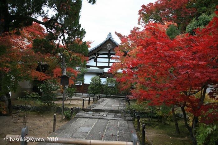 20101118_Kyoto-176_松巖寺(天龍寺塔頭)_1.JPG