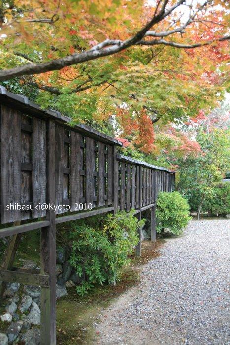20101118_Kyoto-177_松巖寺(天龍寺塔頭)_1.JPG