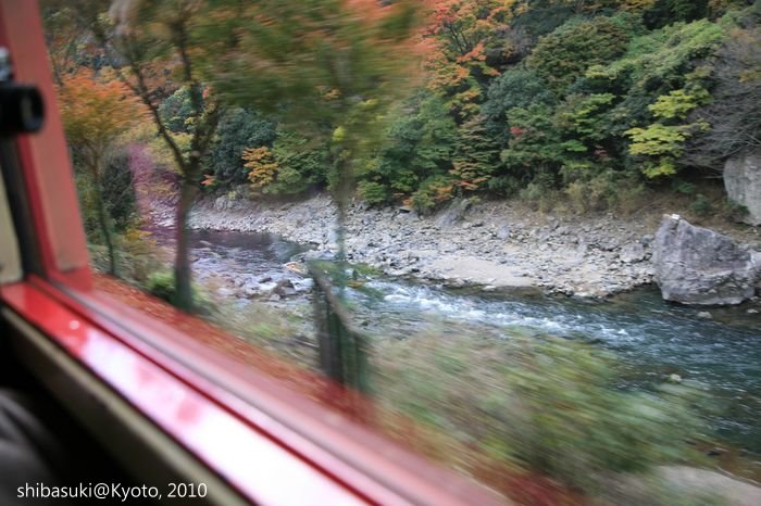 20101118_Kyoto-9_嵐山觀光小火車_1.JPG
