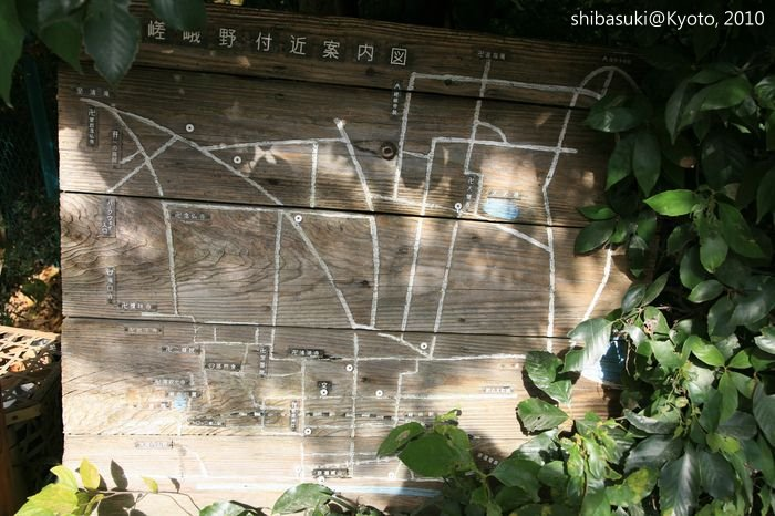 20101118_Kyoto-42_嵯峨野_1.JPG
