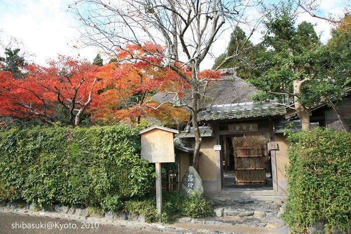 20101118_Kyoto-53_落柿舍_1.JPG
