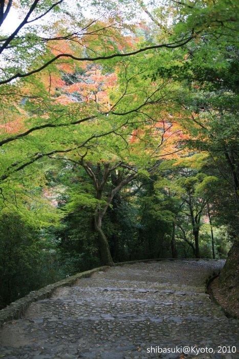 20101118_Kyoto-124_龜山公園_1.JPG