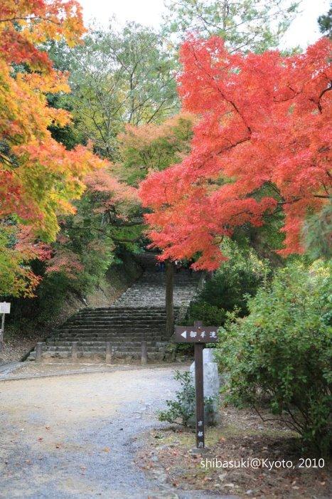 20101118_Kyoto-127_龜山公園_1.JPG