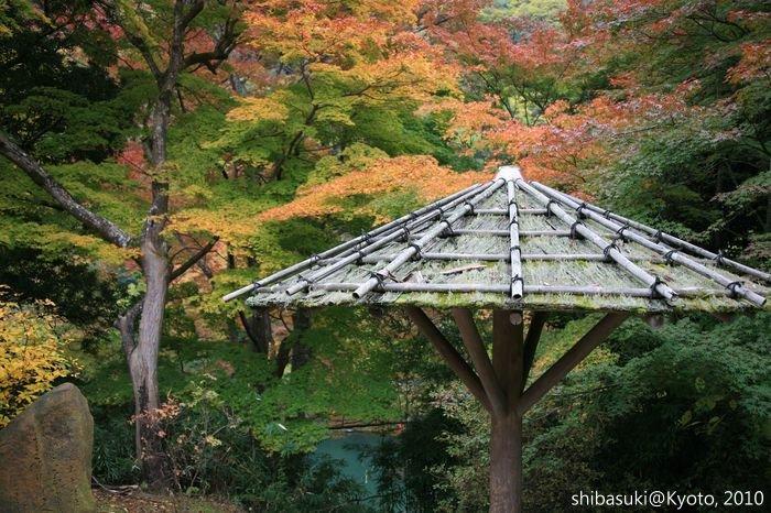 20101118_Kyoto-130_龜山公園_1.JPG