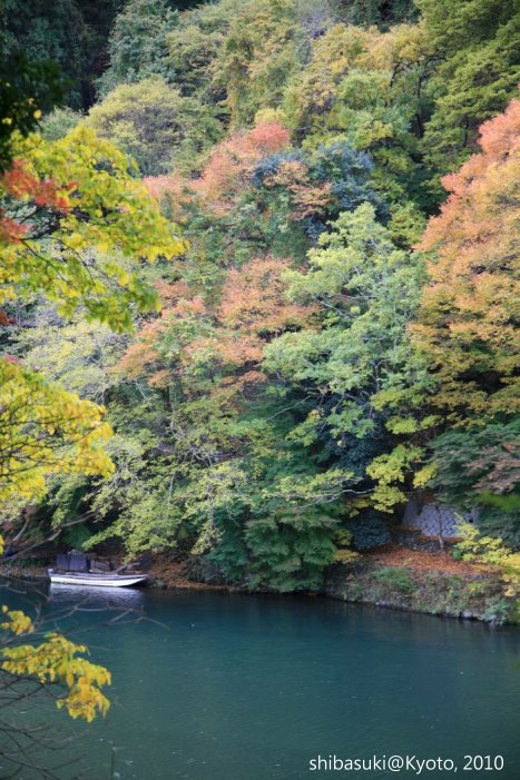 20101118_Kyoto-133_龜山公園_1.JPG