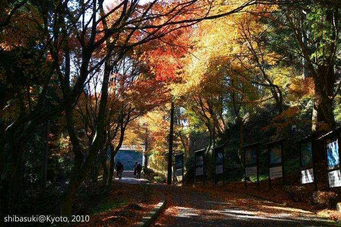 20101119_Kyoto-91_比叡山延曆寺 橫川_1.JPG