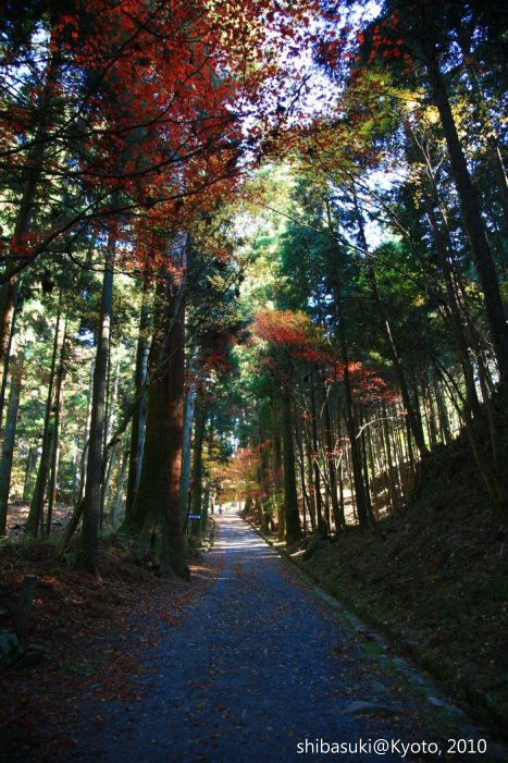 20101119_Kyoto-110_比叡山延曆寺 橫川_1.JPG