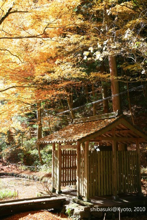 20101119_Kyoto-117_比叡山延曆寺 橫川_1.JPG
