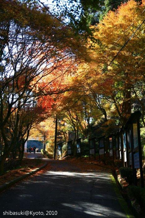 20101119_Kyoto-120_比叡山延曆寺 橫川_1.JPG